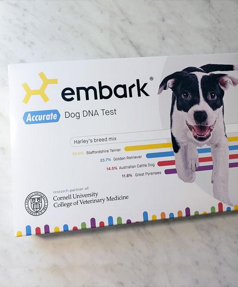 embark_2
